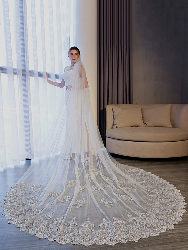 Luxurious Tulle With Lace Long Wedding Veils